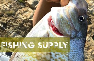 fishing supply